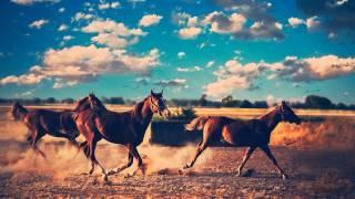 Benjamin McLeod - Cross The City On Horses