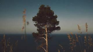 Valotihkuu - Fall Asleep in a Trees Lounge