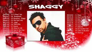 Shaggy Best Songs - Shaggy Top 20 Best Reggea Songs / Best Full Song of Shaggy 2017 /