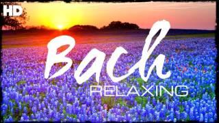 The Best Relaxing Classical Music Ever By Bach - Relaxation Meditation Focus Reading