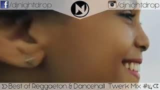 Best Reggaeton & Dancehall Twerk RnB Party Mix #14 | New Latin Pop Club Dance Music 2017