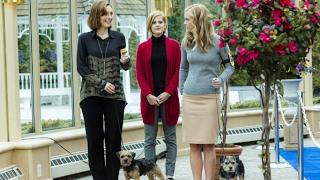 Hallmark movies drama full length 2017 - Hallmark movies 2017 comedy