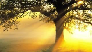 2 Hour Relaxing Classical Music For Stress Relief Santoor , Best Classical Music for Relaxation