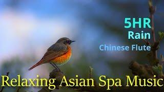 5 Hours of Asian Spa Music for Relaxation  Study and Meditation