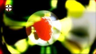 Milky Chance - Sweet Sun  (Sascha Kloeber Deephouse Remix)