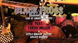 BLACK FROGS ROCKABILLY BAND FEAT. TARSO MILLER LIVE AT AMIGO [HQ show + tracklist]