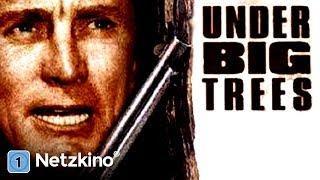Under Big Trees (Western in voller Länge auf Deutsch anschauen, kompletter Film auf Deutsc