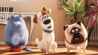 The Secret Life of Pets - Best Scenes 2017