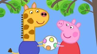 Peppa Pig English Episodes in 4K | Gerald Giraffe!  #PeppaPig