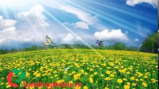 2 HOURS RELAXING MUSIC for Pregnancy l The classical music of Beethoven