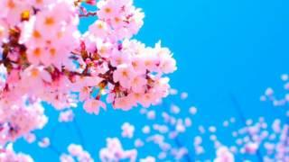 Royalty Free Music - Upbeat Inspirational Asian World Background Music