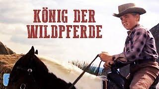 König der Wildpferde (Western in voller Länge Deutsch, Western ganze Filme auf Deutsch anschauen)