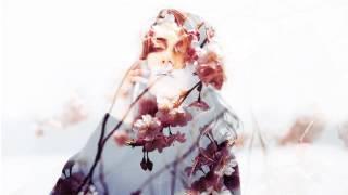Stumbleine - Camber (ft. Steffaloo)