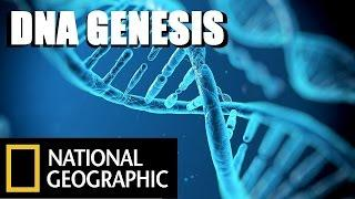 DNA Genesis: The Children Of Adam - National Geographic Documentary Films — Full HD Documentaries