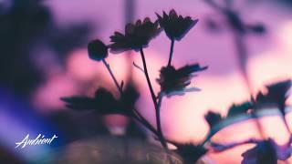 Victoriya x Andy Leech - Night Garden
