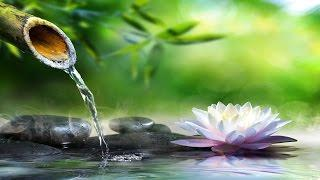 Relaxing Piano Music: Sleep Music, Water Sounds, Relaxing Music, Meditation Music ★47