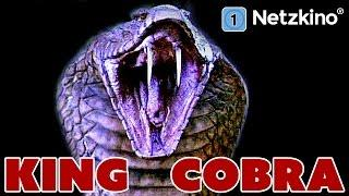 King Cobra (Horror, Thriller in voller Länge)