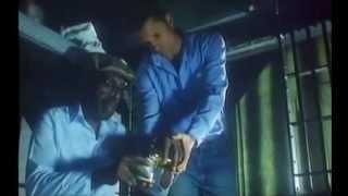 prison (1988) full movie (english)