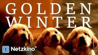 Golden Winter - Wir suchen ein Zuhause (Komödie, Familienfilm in voller Länge auf Deutsch)*HD*