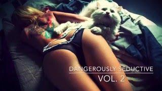Dangerously Seductive ( Vol. 2 ) Chillout / Chillstep Mix