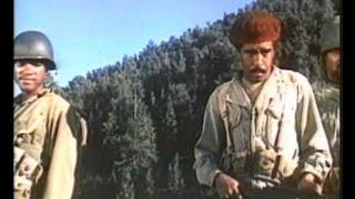 War movies full length english american - Black Brigade (1970) - War movies ww2 english best film