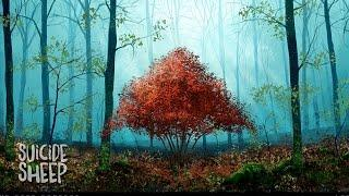 CloZee - Red Forest